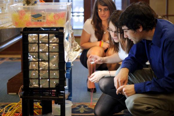 Participants look at a poster presentation at UW-Madison's Undergraduate Symposium